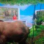 Andreea Esca ignoră elefantul din cameră