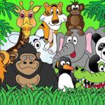 SONDAJ: Doar o parte din animalele de la ZOO ar fi mai fericite în mediul lor natural