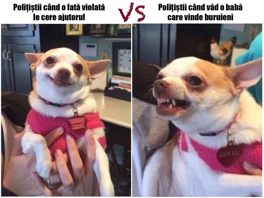 memă făcută de Tibi