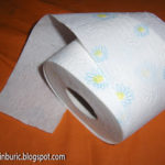 Sul de hârtie igienică, complet împăcat cu soarta ce îl așteaptă