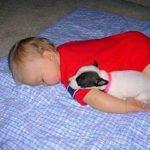 Copil mic fute un pui de somn