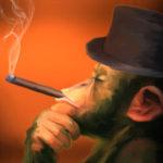 Ai mei 2 bani despre legea împotriva fumatului