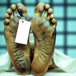 Ierbosofii (cap.2) – Mort din cauze supranaturale