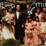 13 lucruri mai puțin cunoscute despre nunta lui Dragnea