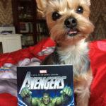 Dobby Talk: O super-carte cu super-eroi și super-dușmani