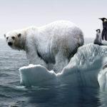 13 lucruri mai puțin cunoscute despre încălzirea globală